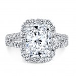 Split Shank Rectangular Halo Ring